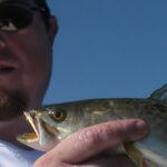 Speckled Trout - Kayak Fishing